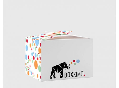 Lunchbox S - Lunch Box & Lunchboxen kaufen - Karton Shop Boxximo